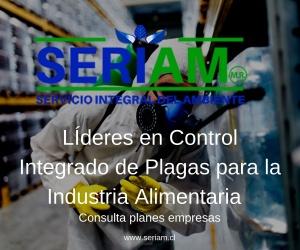 control-plagas-urbanas