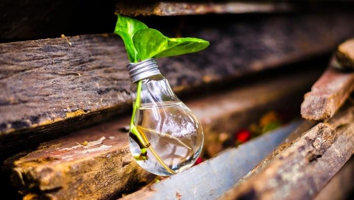 curso online para innovadores