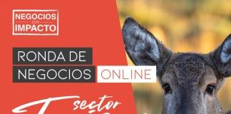 Negocios con Impacto 100% online abre sus postulaciones con foco en turismo