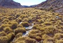 Proponen cinco medidas para abordar la crisis del agua en la reactivación sostenible