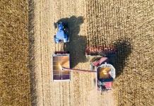 cadenas de suministro de granos