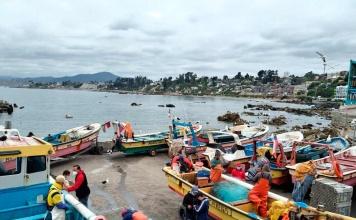 SUBPESCA, IFOP y Fundación Chile elaboran plan de acción para disminuir pérdidas y desperdicios pesqueros en caletas