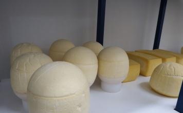 Programa potencia el sector lácteo artesanal de la Región de Los Ríos