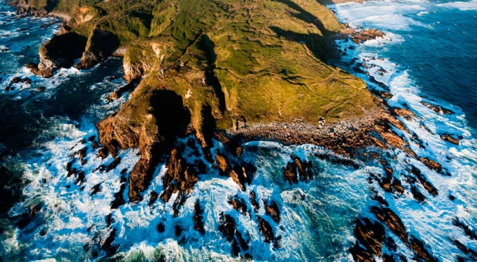Los pasos para que una empresa tecnológica pueda convertirse en una compañía carbono neutral en Chile