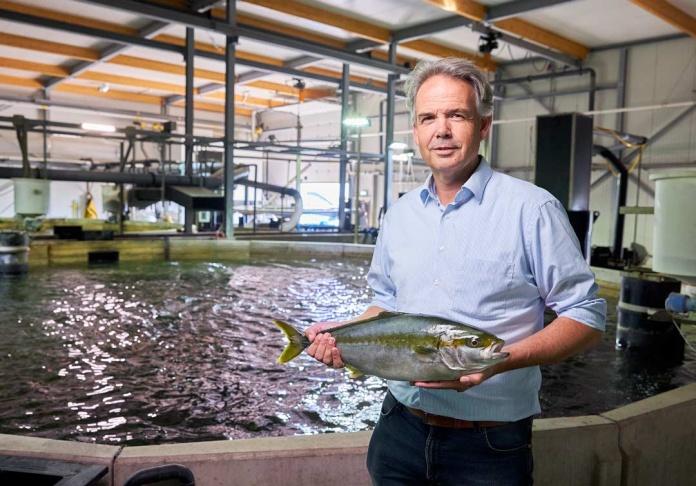 La iluminación LED de Signify ayuda a mejorar de manera sustentable el crecimiento de los peces de The Kingfish Company