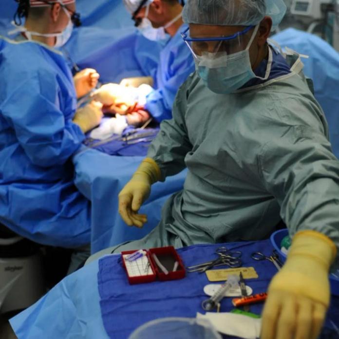 Nuevo software médico digitaliza procedimientos clínicos disminuyendo costos en gestión de insumos