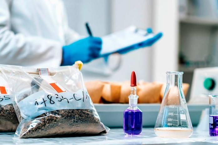 Inversión en I+D: la clave del éxito en la reinvención de la industria alimenticia