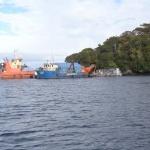 Superintendencia del Medio Ambiente Formuló Cargos contra Blumar S.A. por Centros de Engorda de Salmónidos