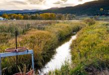 El derecho jurídico del agua, más que incorporarse en la Constitución, debe acompañarse de un buen desarrollo legislativo