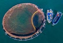 Proyecto CORFO: Apuestan por nanotecnología antifouling basada en cobre para mejorar redes de cultivo acuícola
