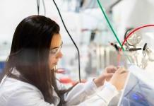 Los Ríos:Hasta 30 millones podrán optar pymes que deseen innovar en sus procesos o productos