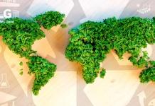 Atrasemos la deuda ecológica con estos pequeños consejos para cuidar el medio ambiente desde el hogar