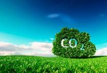 Bain & Company celebra su décimo aniversario como empresa 100% CarbonNeutral®