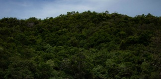 Chile es el país latinoamericano que genera más desechos plásticos de un solo uso