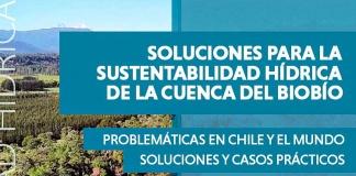 """congreso virtual y gratuito """"Soluciones para la sustentabilidad hídrica de la cuenca del Biobío"""""""