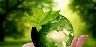 Estudio IBM: empresas aceleran iniciativas de sostenibilidad, pero menos de 1/3 de los retailers y las empresas de productos de consumo han definido formas de medir sus objetivos de sostenibilidad