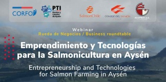 Exitoso resultado tuvo la primera rueda de negocios entre productoras de salmón y proveedores de servicios locales de Aysén