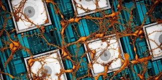 """Samsung Electronics presenta una visión para """"copiar y pegar"""" el cerebro en chips neuromórficos"""